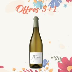 Offres 5+1 Château Montner, Premium blanc - AOP Côtes du Roussillon
