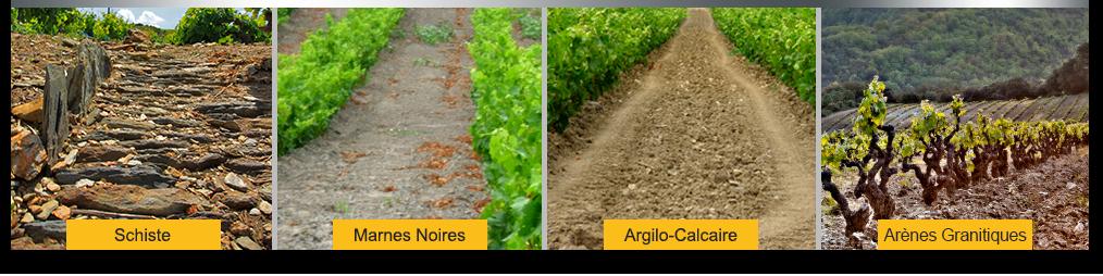 Terres des vignes d'Agly, schiste, marne noire, argilo-calcaire